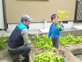 春の収穫祭